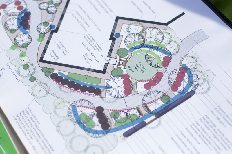 Food Forest Design