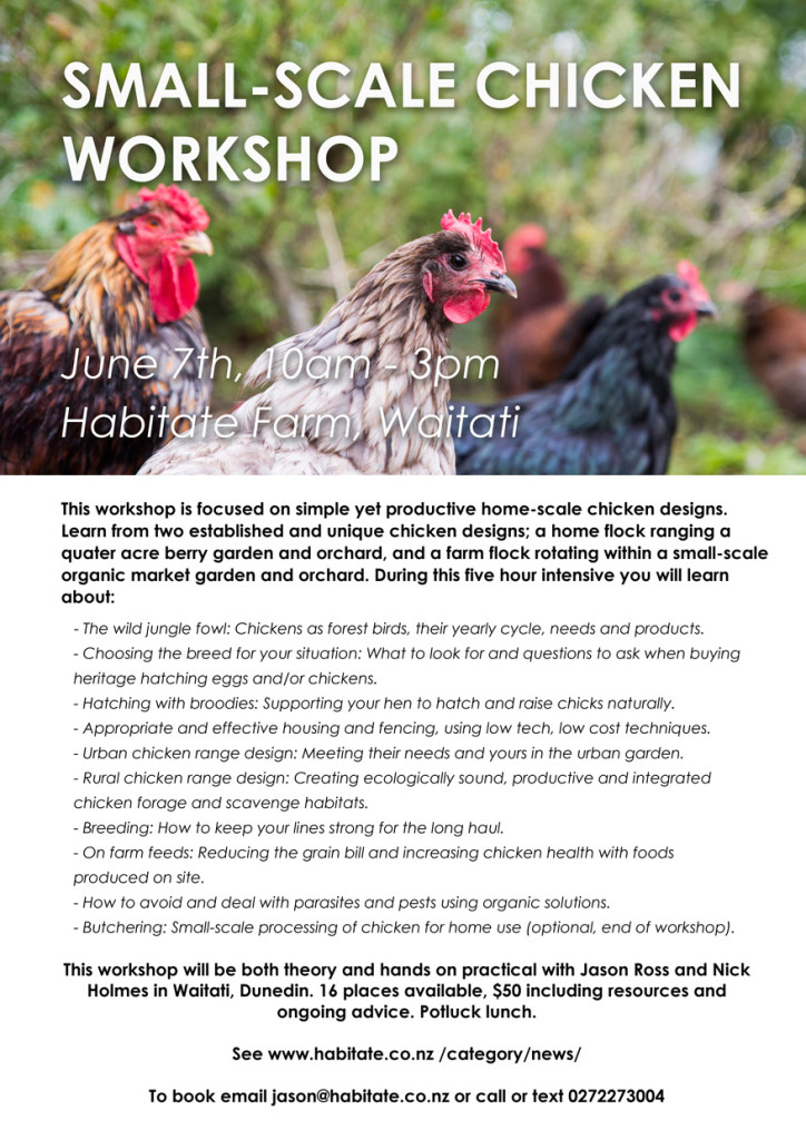 chicken workshop habitate