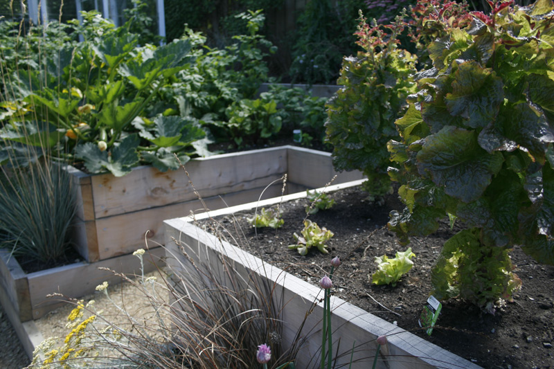 Keyhole Vegetable Beds