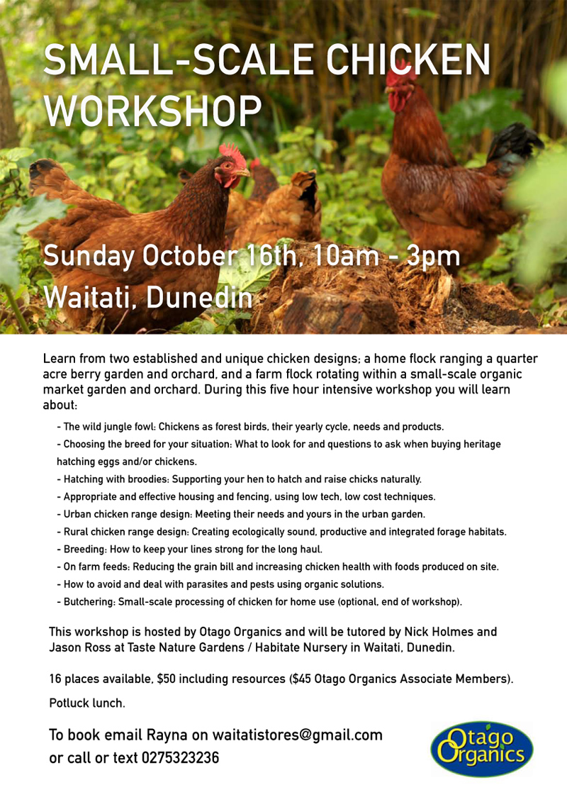 permaculture chicken workshop